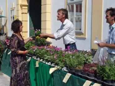 Záhradné dni na zámku Schloss Hof