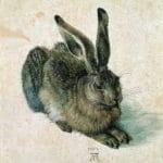 Albrecht Dürer© Albertina, Vienna
