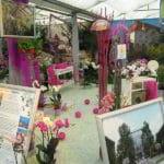 Medzinarodna_vystava_orchidei_5