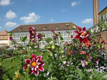 Jesenná záhradná slávnosť na zámku Schloss Hof