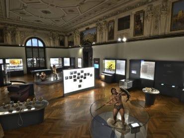 Prírodovedecké múzeum vo Viedni