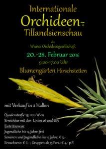 Medzinarodna-vystava-orchidei-2016
