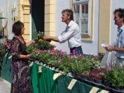 Dni záhrad na zámku Schloss Hof: zážitok nielen pre milovníkov flóry