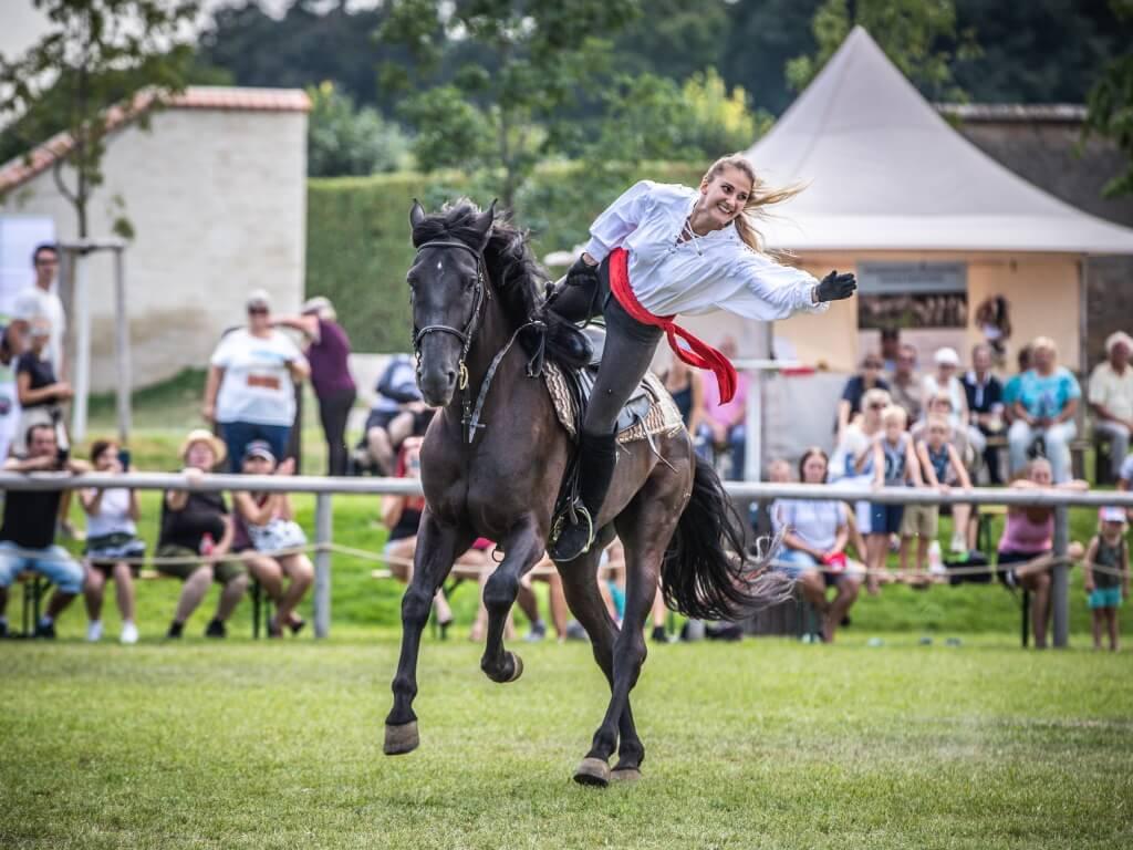 slavnost koni schlosshof